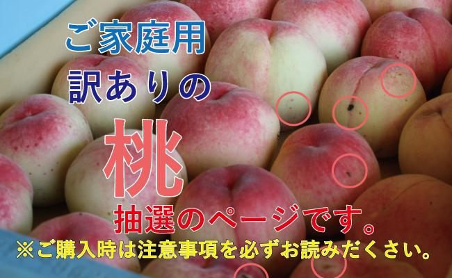 ご家庭用の桃1