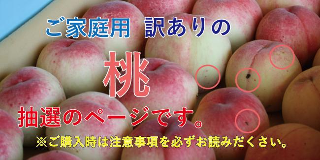 ご家庭用の桃2