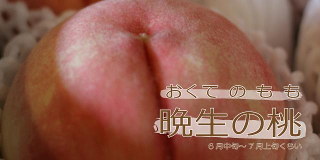 晩生の桃1